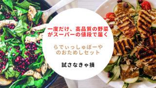 らでぃっしゅぼーやのおためしセットはお得?【おまかせ野菜ボックス1980円】の購入レビュー